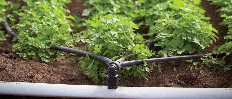 Products for precision irrigation